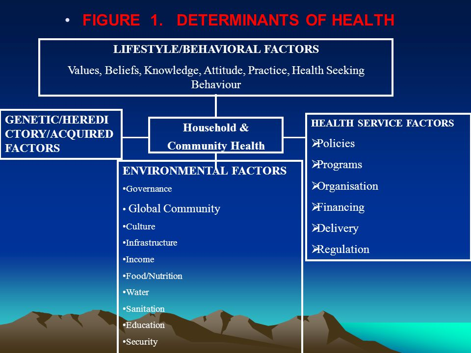 FIGURE 1. DETERMINANTS OF HEALTH LIFESTYLE/BEHAVIORAL FACTORS Values, Beliefs, Knowledge, Attitude, Practice, Health Seeking Behaviour Household & Com