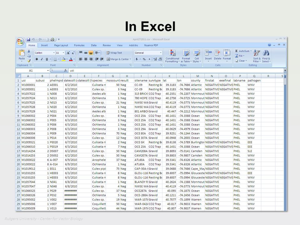 Rutgers University - Center for Vector Biology In Excel
