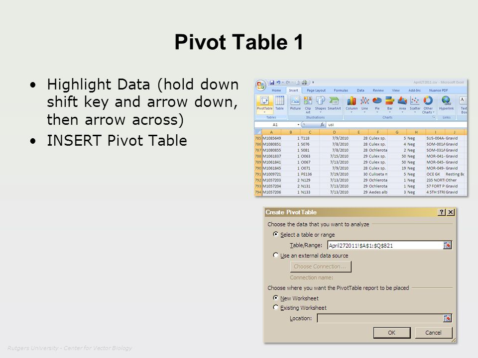 Rutgers University - Center for Vector Biology Pivot Table 1 Highlight Data (hold down shift key and arrow down, then arrow across) INSERT Pivot Table