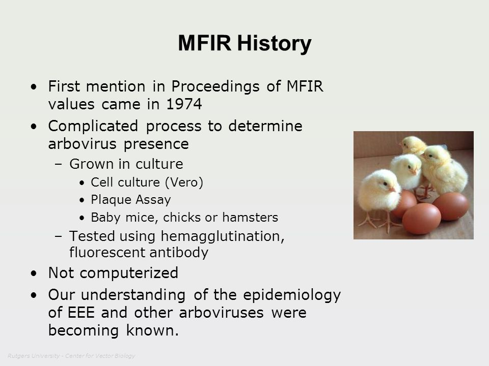 Rutgers University - Center for Vector Biology MFIR History First mention in Proceedings of MFIR values came in 1974 Complicated process to determine