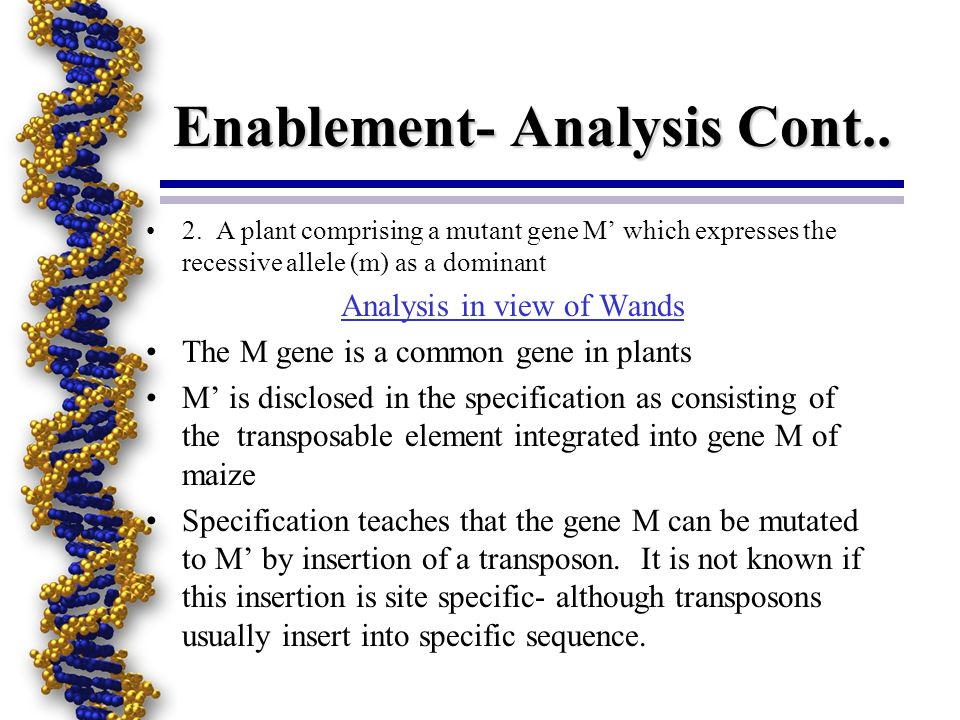 Enablement- Analysis Cont.. 2. A plant comprising a mutant gene M which expresses the recessive allele (m) as a dominant Analysis in view of Wands The