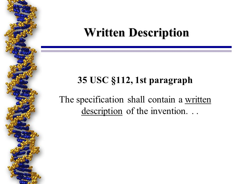 Written Description 35 USC §112, 1st paragraph The specification shall contain a written description of the invention...