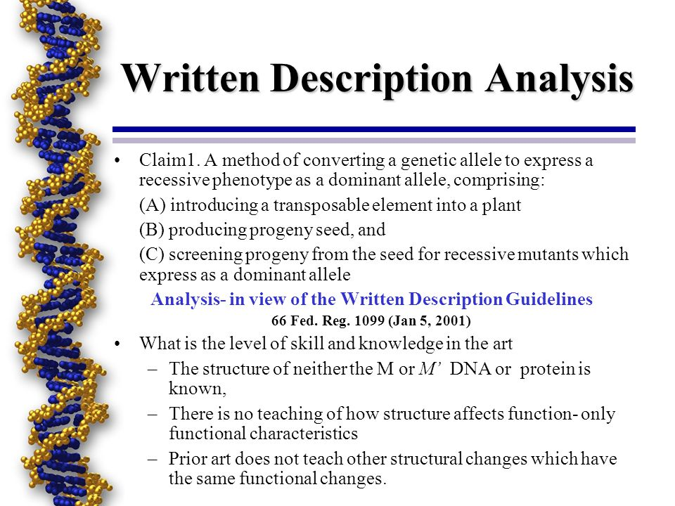 Written Description Analysis Claim1. A method of converting a genetic allele to express a recessive phenotype as a dominant allele, comprising: (A) in