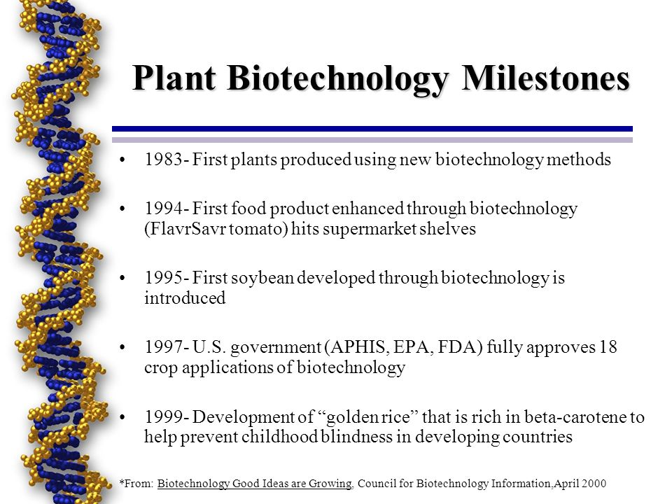 Plant Biotechnology Milestones 1983- First plants produced using new biotechnology methods 1994- First food product enhanced through biotechnology (Fl