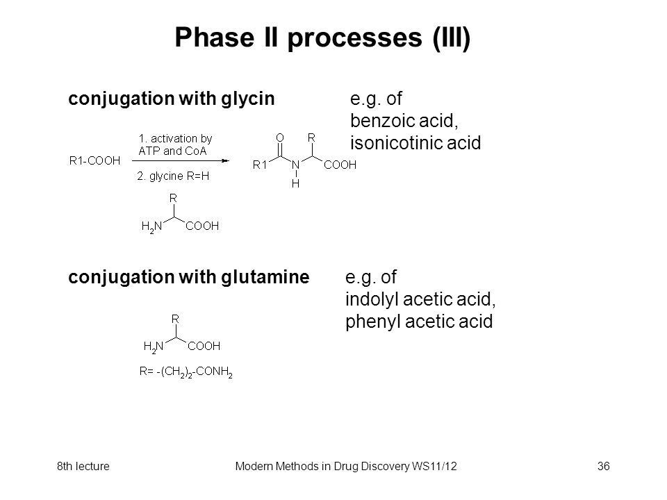8th lectureModern Methods in Drug Discovery WS11/1236 Phase II processes (III) conjugation with glycin e.g. of benzoic acid, isonicotinic acid conjuga