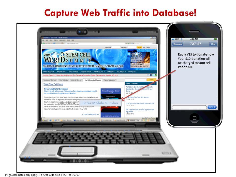 Capture Web Traffic into Database.