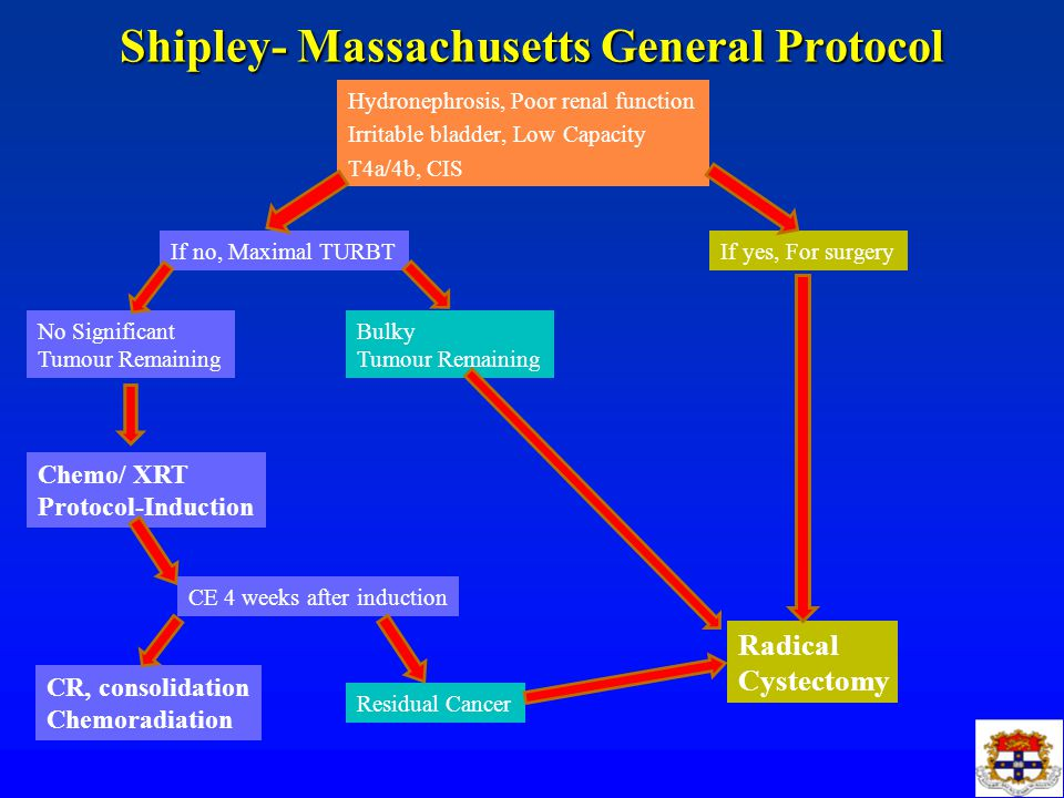 Shipley- Massachusetts General Protocol Hydronephrosis, Poor renal function Irritable bladder, Low Capacity T4a/4b, CIS If yes, For surgery Radical Cy
