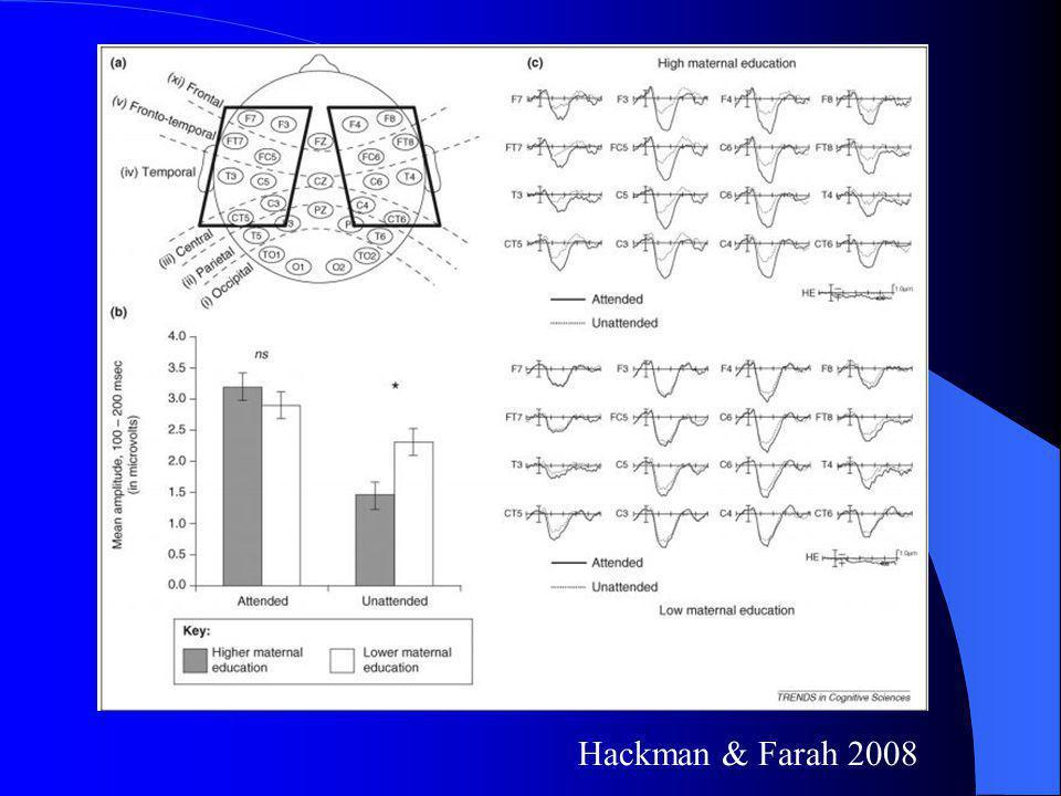 Hackman & Farah 2008