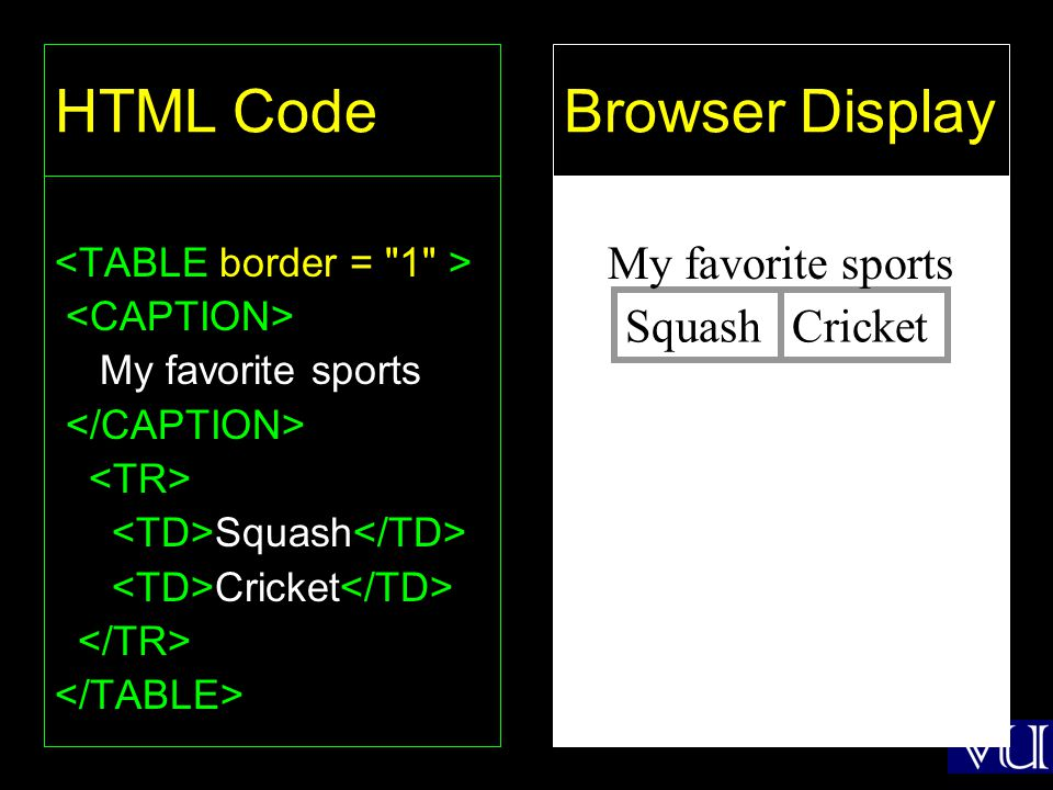 46 HTML Code My favorite sports Squash Cricket Browser Display SquashCricket My favorite sports