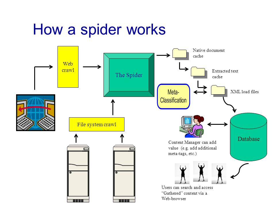 How a spider works File system crawl Database Web crawl The Spider Native document cache Extracted text cache XML load files Content Manager can add value (e.g.