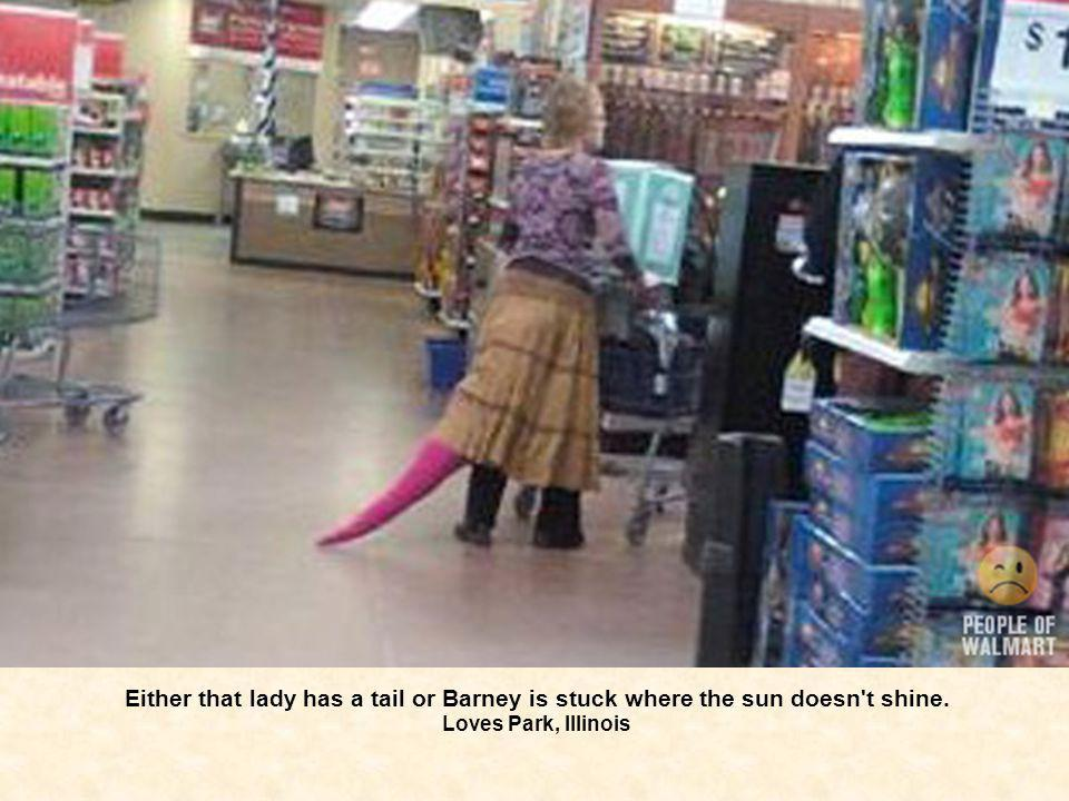 Either that lady has a tail or Barney is stuck where the sun doesn't shine. Loves Park, Illinois