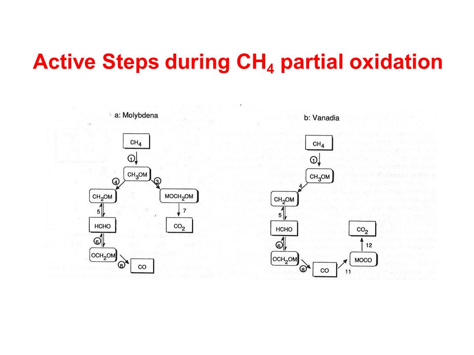 Active Steps during CH 4 partial oxidation