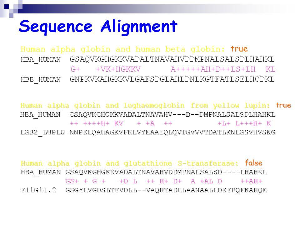 Sequence Alignment Human alpha globin and human beta globin: true HBA_HUMAN GSAQVKGHGKKVADALTNAVAHVDDMPNALSALSDLHAHKL G+ +VK+HGKKV A+++++AH+D++LS+LH KL HBB_HUMAN GNPKVKAHGKKVLGAFSDGLAHLDNLKGTFATLSELHCDKL Human alpha globin and leghaemoglobin from yellow lupin: true Human alpha globin and leghaemoglobin from yellow lupin: true HBA_HUMAN GSAQVKGHGKKVADALTNAVAHV---D--DMPNALSALSDLHAHKL HBA_HUMAN GSAQVKGHGKKVADALTNAVAHV---D--DMPNALSALSDLHAHKL ++ ++++H+ KV + +A ++ +L+ L+++H+ K ++ ++++H+ KV + +A ++ +L+ L+++H+ K LGB2_LUPLU NNPELQAHAGKVFKLVYEAAIQLQVTGVVVTDATLKNLGSVHVSKG LGB2_LUPLU NNPELQAHAGKVFKLVYEAAIQLQVTGVVVTDATLKNLGSVHVSKG Human alpha globin and glutathione S-transferase: false HBA_HUMANGSAQVKGHGKKVADALTNAVAHVDDMPNALSALSD----LHAHKL HBA_HUMAN GSAQVKGHGKKVADALTNAVAHVDDMPNALSALSD----LHAHKL GS+ + G + +D L ++ H+ D+ A +AL D ++AH+ GS+ + G + +D L ++ H+ D+ A +AL D ++AH+ F11G11.2 GSGYLVGDSLTFVDLL--VAQHTADLLAANAALLDEFPQFKAHQE