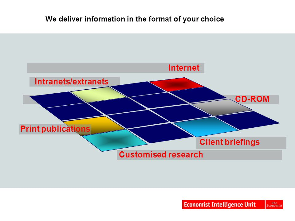 We deliver information in the format of your choice CD-ROM Intranets/extranets Internet Customised research Client briefings Print publications