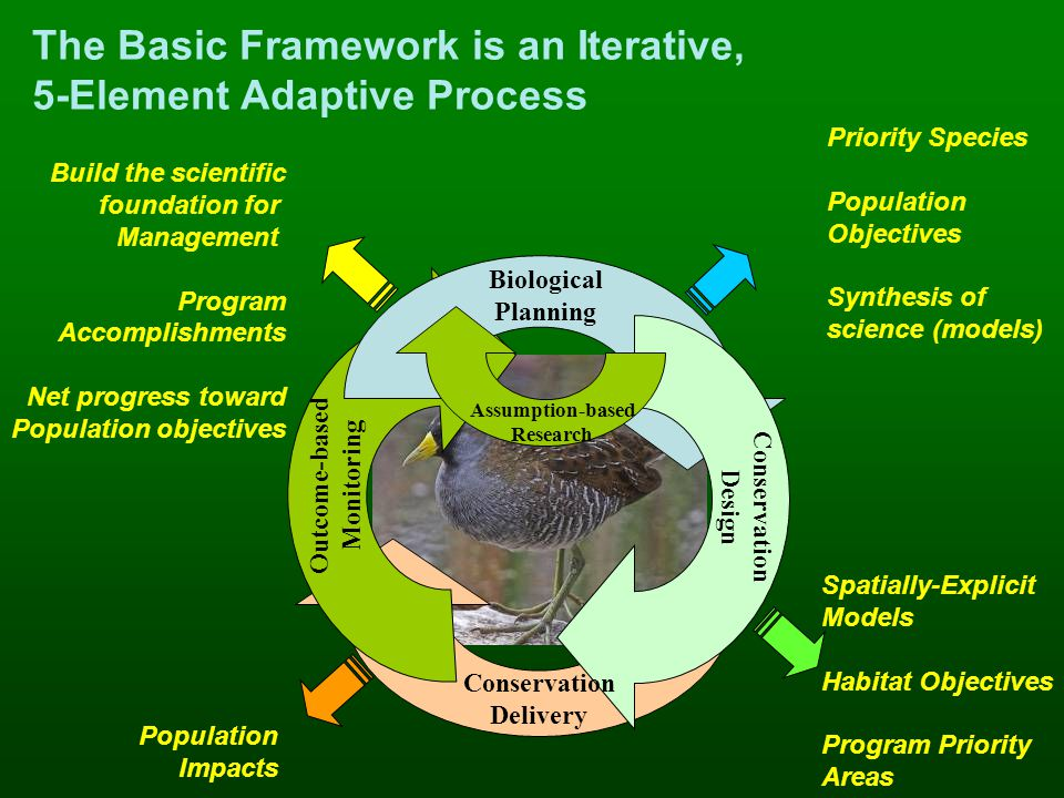 The Basic Framework is an Iterative, 5-Element Adaptive Process Priority Species Population Objectives Synthesis of science (models) Spatially-Explicit Models Habitat Objectives Program Priority Areas Population Impacts Build the scientific foundation for Management Program Accomplishments Net progress toward Population objectives Outcome-based Monitoring Biological Planning Conservation Design Assumption-based Research Conservation Delivery