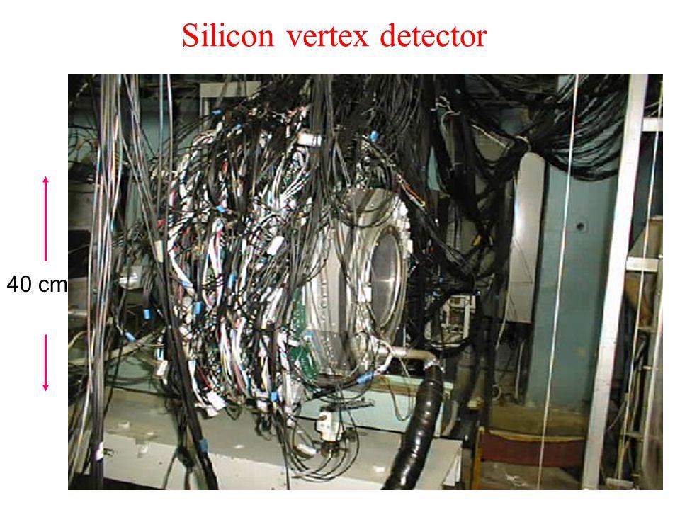 Silicon vertex detector 40 cm