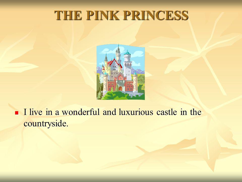 THE PINK PRINCESS Hello. I am the pink princess and I am very sad.