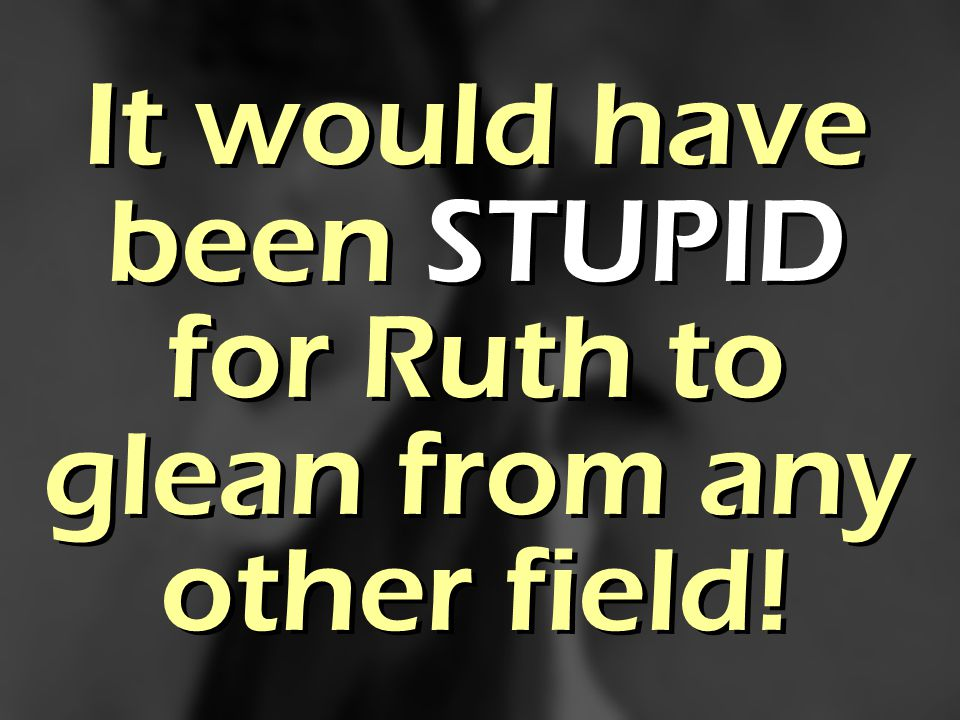 It would have been STUPID for Ruth to glean from any other field!