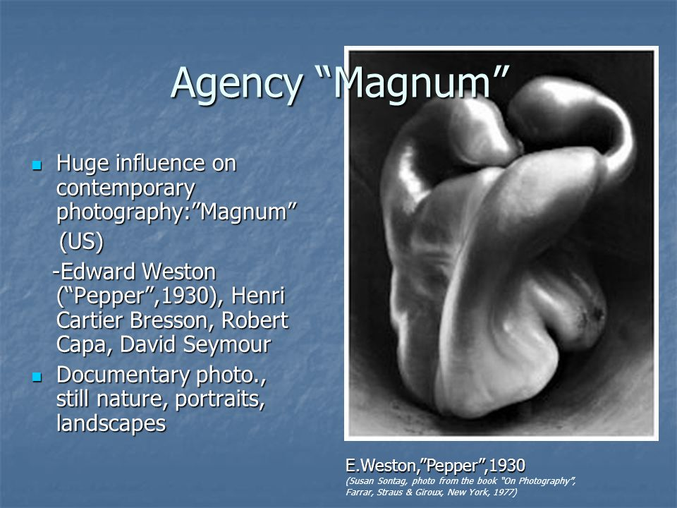 Agency Magnum Huge influence on contemporary photography:Magnum Huge influence on contemporary photography:Magnum (US) (US) -Edward Weston (Pepper,1930), Henri Cartier Bresson, Robert Capa, David Seymour -Edward Weston (Pepper,1930), Henri Cartier Bresson, Robert Capa, David Seymour Documentary photo., still nature, portraits, landscapes Documentary photo., still nature, portraits, landscapes E.Weston,Pepper,1930 (Susan Sontag, photo from the book On Photography, Farrar, Straus & Giroux, New York, 1977)