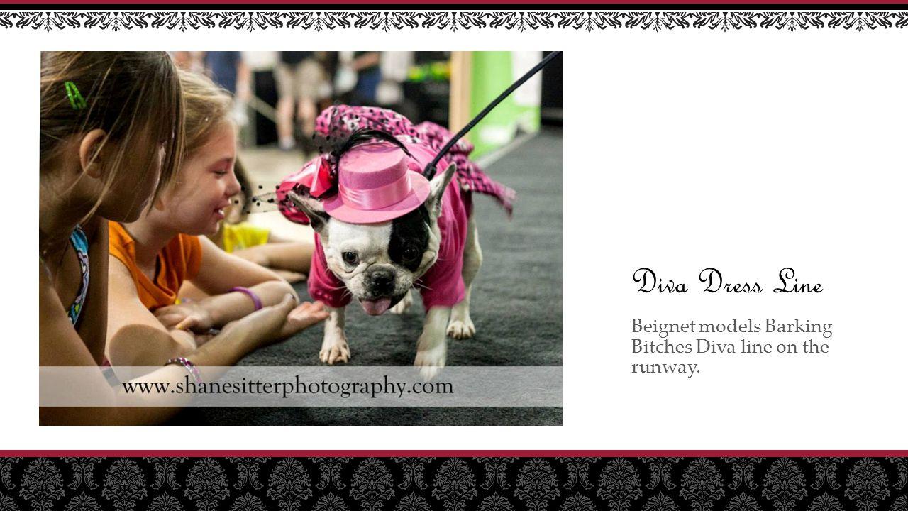 Diva Dress Line Beignet models Barking Bitches Diva line on the runway.