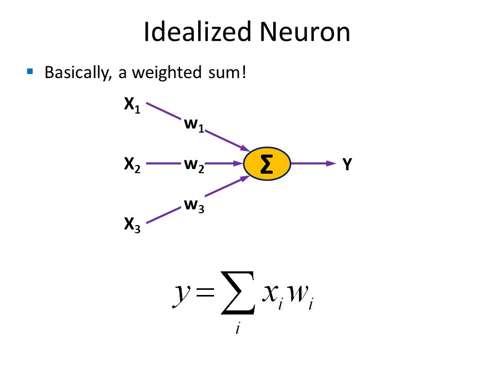 Idealized Neuron Σ X1X1 w1w1 X2X2 X3X3 w2w2 w3w3 Y Basically, a weighted sum!