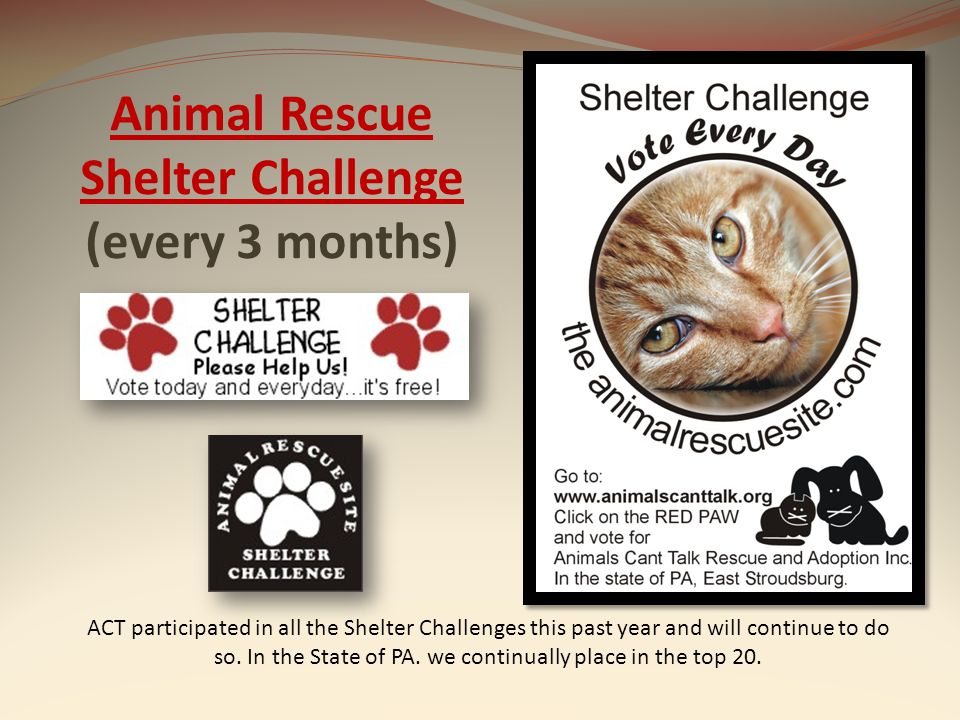 Animal Rescue Shelter Challenge Animal Rescue Shelter Challenge (every 3 months) ACT participated in all the Shelter Challenges this past year and wil
