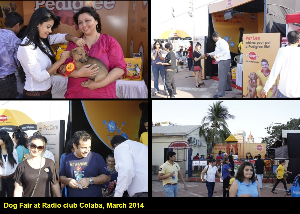 Dog Fair at Radio club Colaba, March 2014 I, Me aur Main