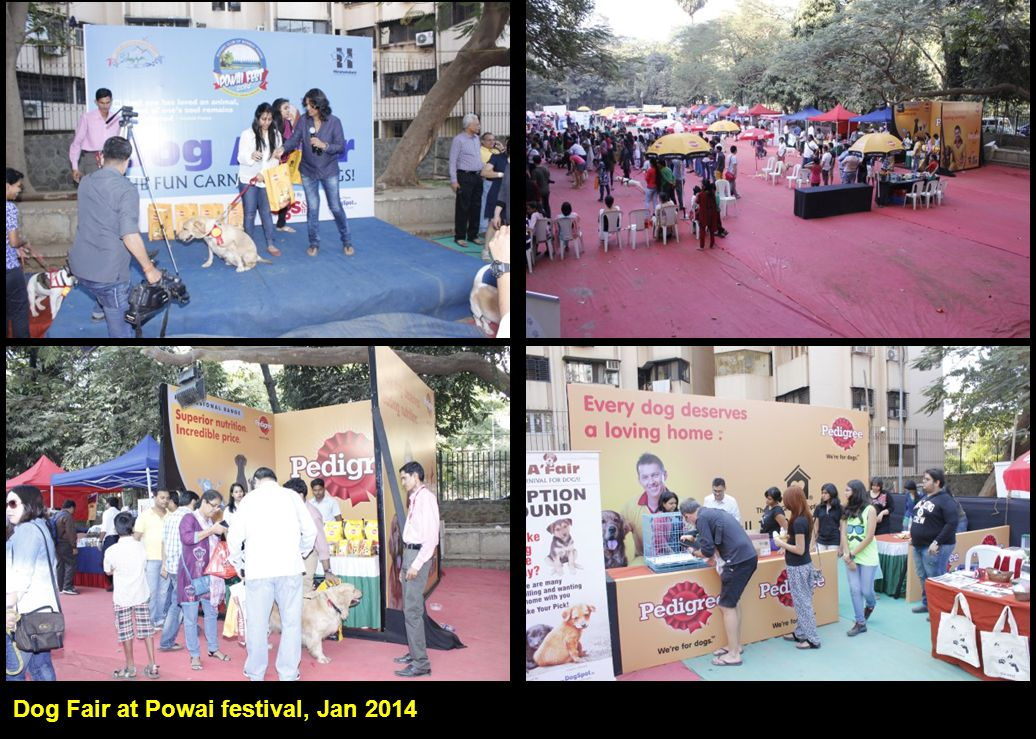 Dog Fair at Powai festival, Jan 2014 I, Me aur Main