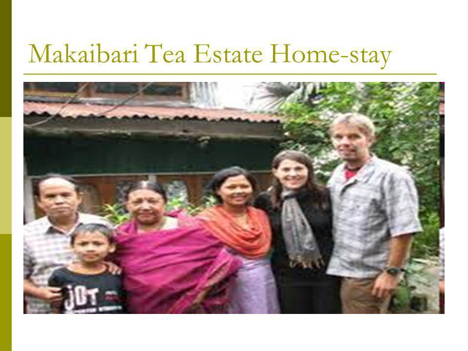 Makaibari Tea Estate Home-stay