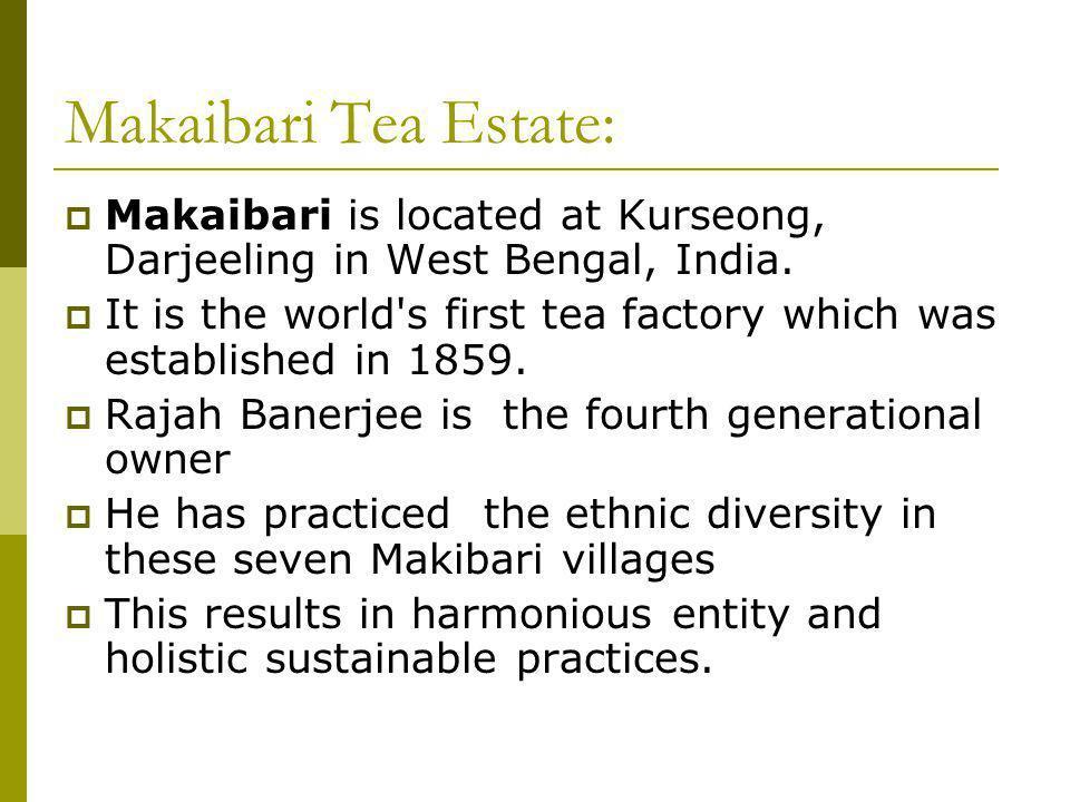 Makaibari Tea Estate: Makaibari is located at Kurseong, Darjeeling in West Bengal, India.