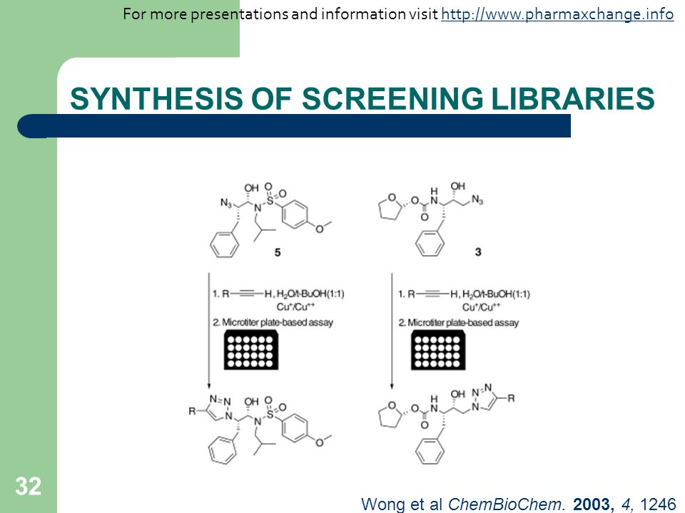 32 SYNTHESIS OF SCREENING LIBRARIES Wong et al ChemBioChem.