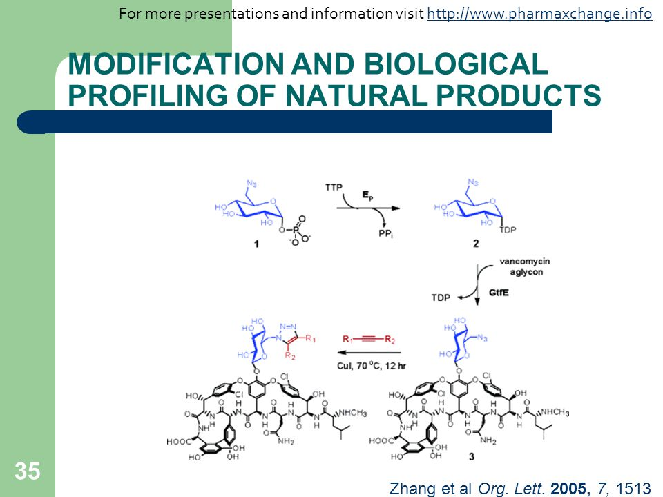 35 MODIFICATION AND BIOLOGICAL PROFILING OF NATURAL PRODUCTS Zhang et al Org. Lett. 2005, 7, 1513 For more presentations and information visit http://