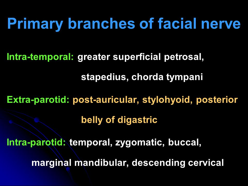 Primary branches of facial nerve Intra-temporal: greater superficial petrosal, stapedius, chorda tympani Extra-parotid: post-auricular, stylohyoid, po