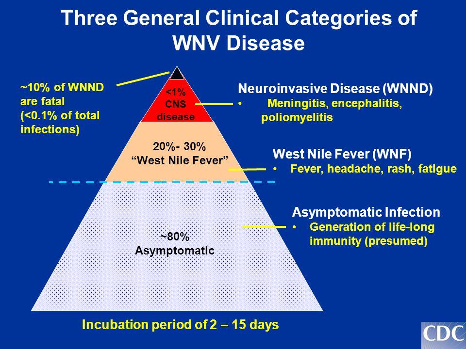 Three General Clinical Categories of WNV Disease ~80% Asymptomatic 20%- 30% West Nile Fever <1% CNS disease Neuroinvasive Disease (WNND) Meningitis, e