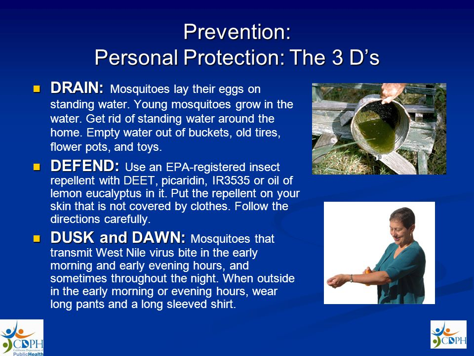 Prevention: Personal Protection: The 3 Ds DRAIN: DRAIN: Mosquitoes lay their eggs on standing water. Young mosquitoes grow in the water. Get rid of st