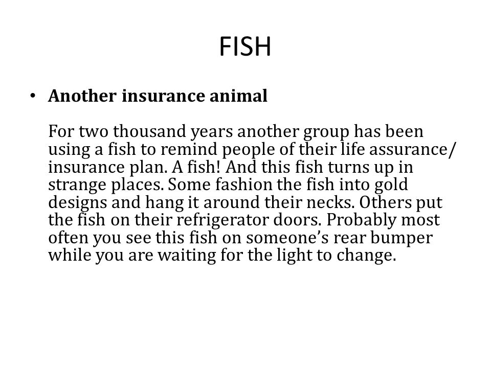 FISH Another insurance animal For two thousand years another group has been using a fish to remind people of their life assurance/ insurance plan.