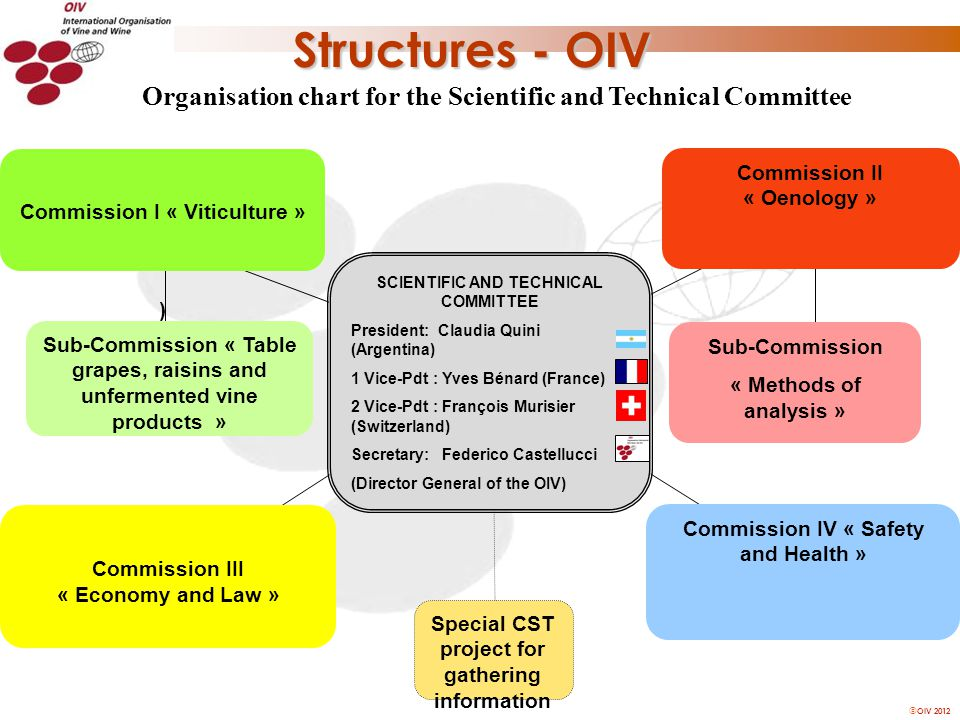 OIV 2012 Commission I « Viticulture » ) SCIENTIFIC AND TECHNICAL COMMITTEE President: Claudia Quini (Argentina) 1 Vice-Pdt : Yves Bénard (France) 2 Vice-Pdt : François Murisier (Switzerland) Secretary: Federico Castellucci (Director General of the OIV) Sub-Commission « Methods of analysis » Commission IV « Safety and Health » Commission III « Economy and Law » Sub-Commission « Table grapes, raisins and unfermented vine products » Commission II « Oenology » Special CST project for gathering information Organisation chart for the Scientific and Technical Committee Structures - OIV