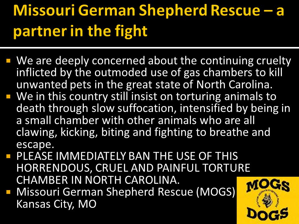 We are deeply concerned about the continuing cruelty inflicted by the outmoded use of gas chambers to kill unwanted pets in the great state of North Carolina.