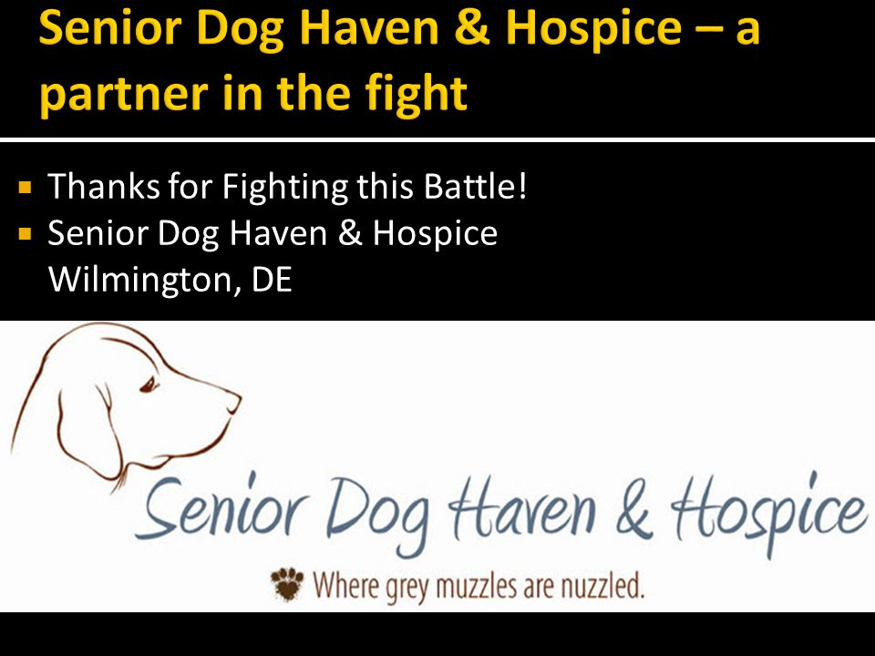 Thanks for Fighting this Battle! Senior Dog Haven & Hospice Wilmington, DE