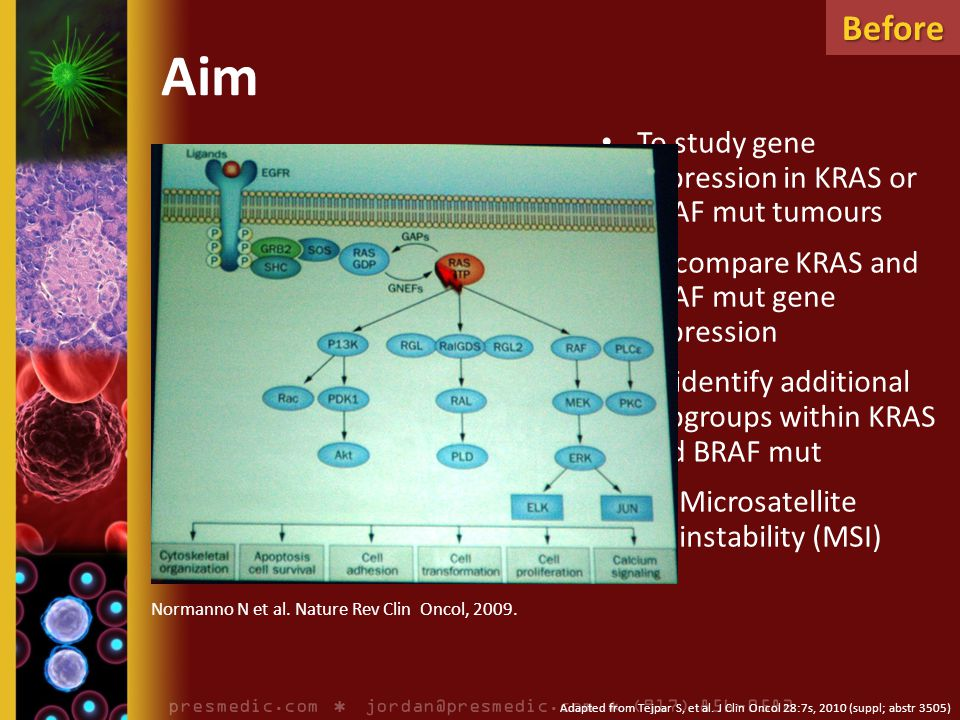 Aim To study gene expression in KRAS or BRAF mut tumours To compare KRAS and BRAF mut gene expression To identify additional subgroups within KRAS and BRAF mut – Microsatellite instability (MSI) Adapted from Tejpar S, et al.