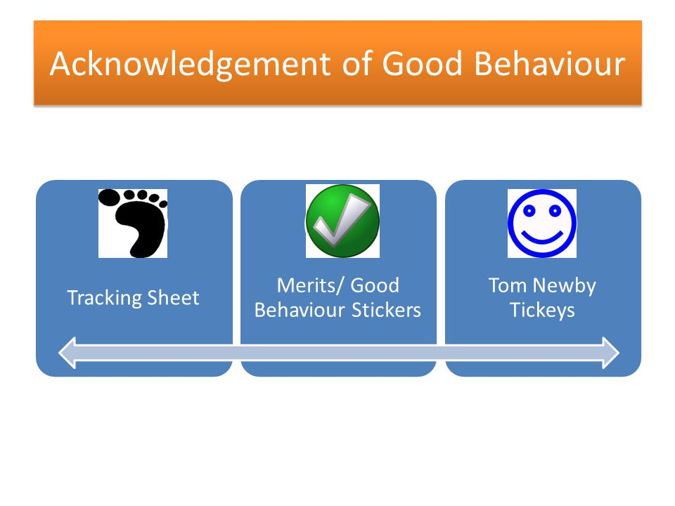 Acknowledgement of Good Behaviour Tracking Sheet Merits/ Good Behaviour Stickers Tom Newby Tickeys