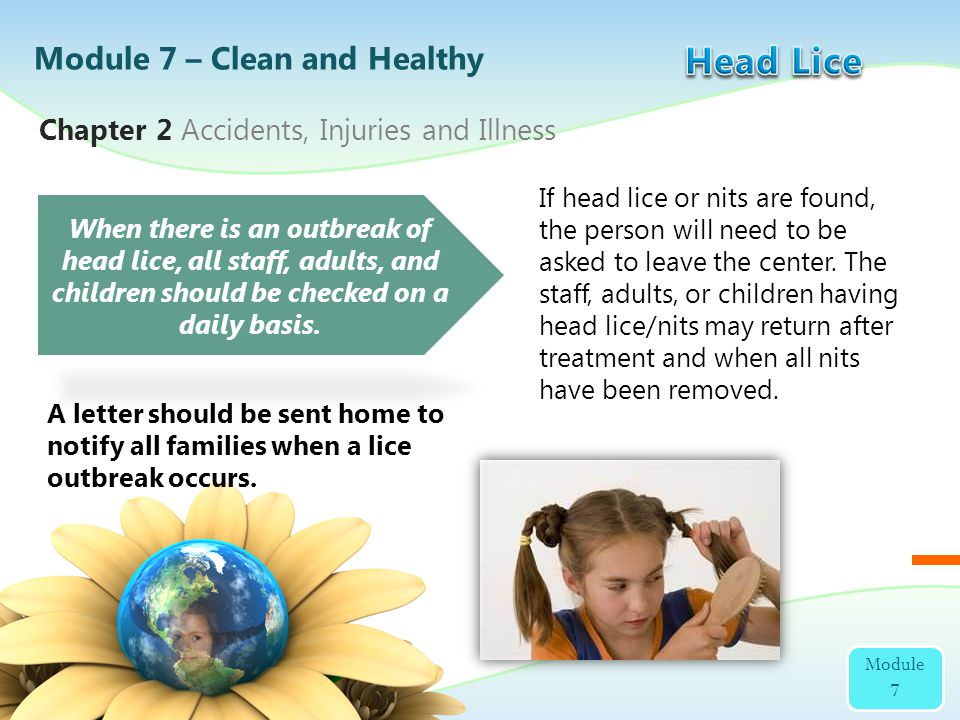 If head lice or nits are found, the person will need to be asked to leave the center. The staff, adults, or children having head lice/nits may return