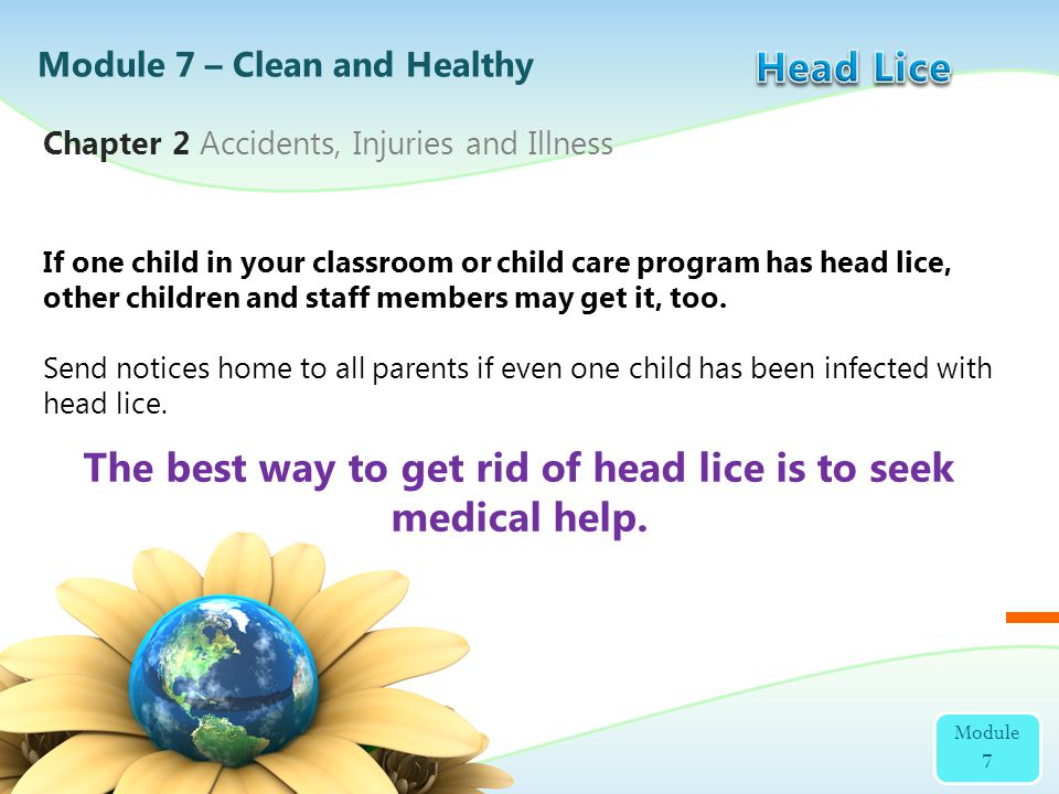If one child in your classroom or child care program has head lice, other children and staff members may get it, too. Send notices home to all parents