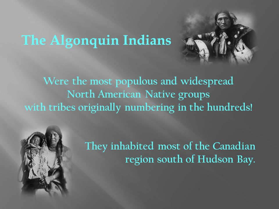 The Algonquin Indians Were the most populous and widespread North American Native groups with tribes originally numbering in the hundreds! They inhabi