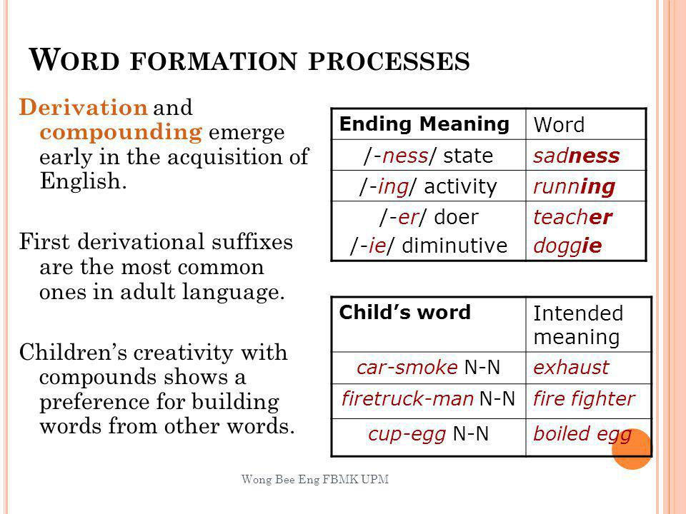 W ORD FORMATION PROCESSES Derivation and compounding emerge early in the acquisition of English.