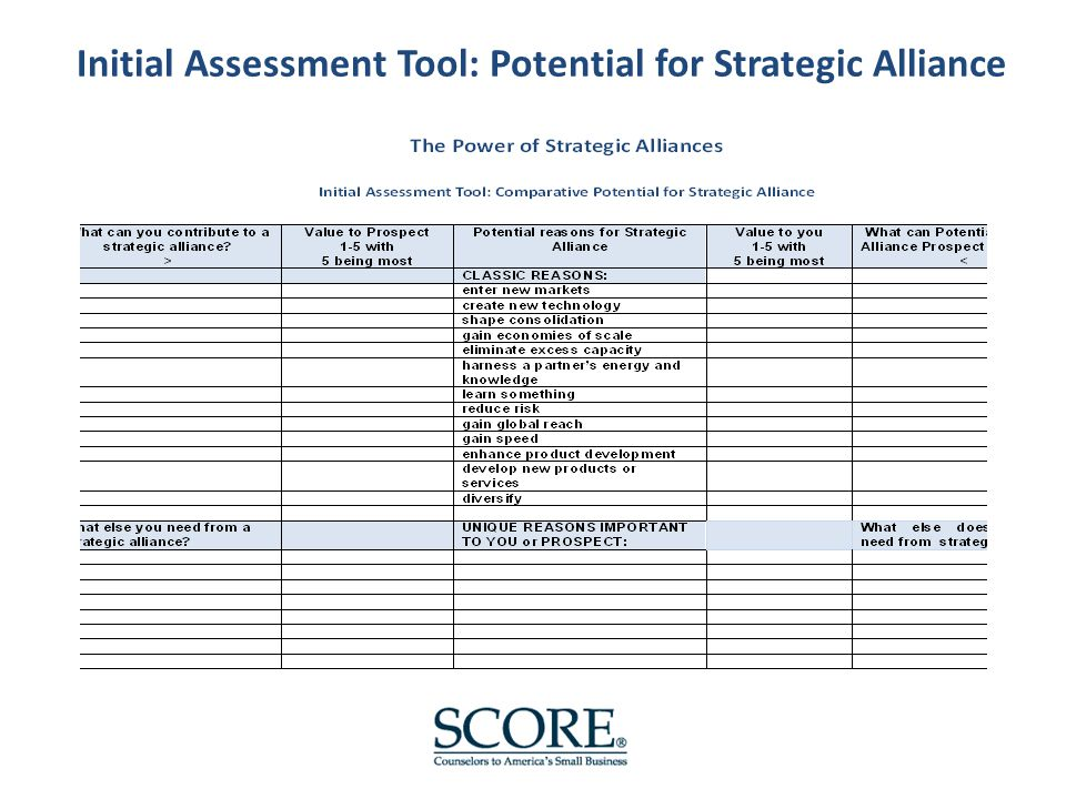 Initial Assessment Tool: Potential for Strategic Alliance