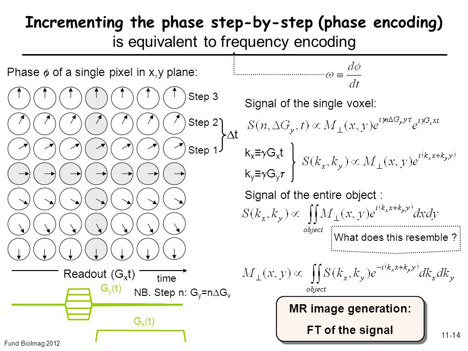 Fund BioImag 2012 11-14 Step 3 Step 2 Step 1 Phase of a single pixel in x,y plane: Readout (G x t) G x (t) G y (t) Incrementing the phase step-by-step (phase encoding) is equivalent to frequency encoding time Signal of the single voxel: k x G x t k y G y Signal of the entire object : What does this resemble .