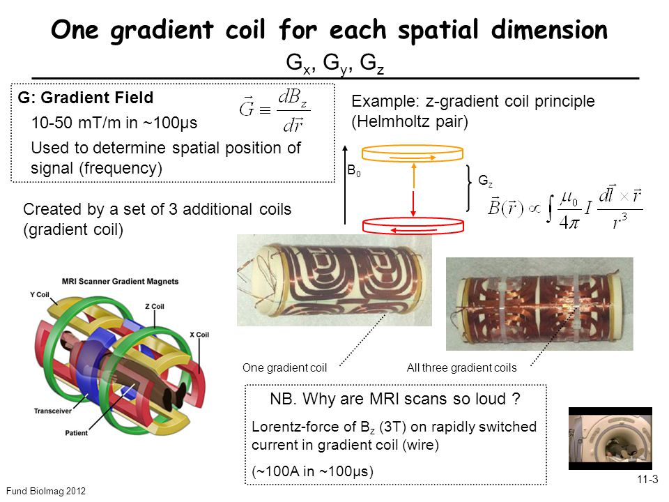 Fund BioImag 2012 11-3 One gradient coil for each spatial dimension G x, G y, G z Created by a set of 3 additional coils (gradient coil) G: Gradient F