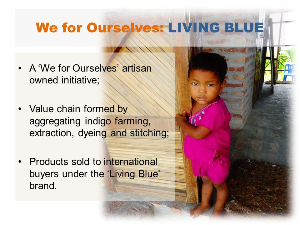 A We for Ourselves artisan owned initiative; Value chain formed by aggregating indigo farming, extraction, dyeing and stitching; Products sold to international buyers under the Living Blue brand.