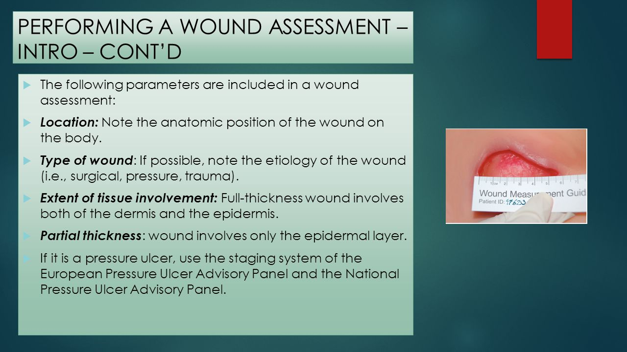 Performing a Wound Assessment Type and percentage of tissue in wound base: Describe the type of tissue (i.e., granulation, slough, eschar) and the approximate amount.